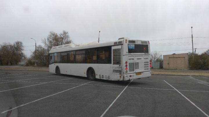 «Пожаловались на горячую линию»: волгоградцы не могут поделить парковку с водителями автобусов