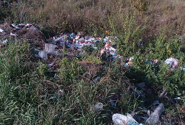 В Далматовском районе ликвидировали незаконные свалки