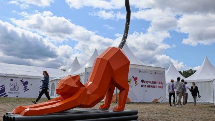 Масштабный арт-объект: в Самаре установят новую кошку на батарее