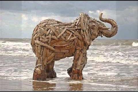 По задумке автора, слон из вторсырья должен заставить людей задуматься о сохранении природных ресурсов
