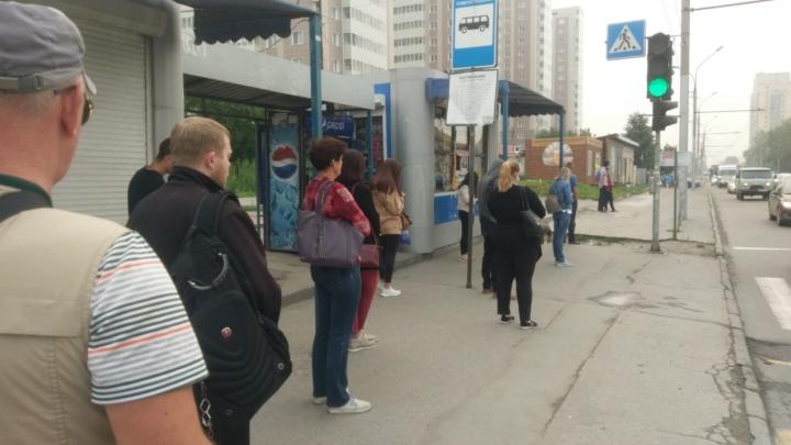 Троллейбусы встали на улице Кирова из-за обрыва проводов