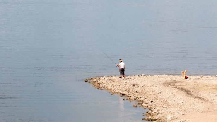 В Самаре сняли с продажи крупную партию просроченной рыбы