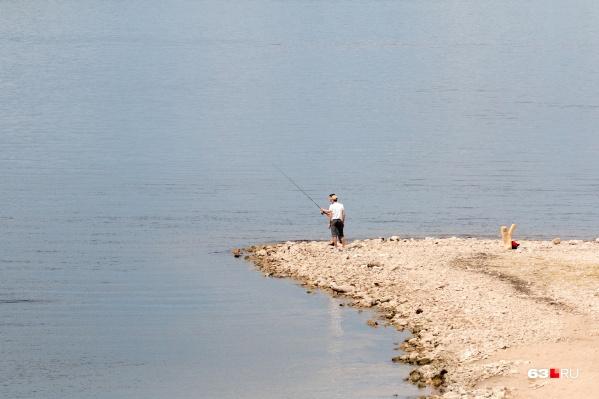 Свой улов тоже не всегда полезен — экологическая ситуация в водоемах оставляет желать лучшего