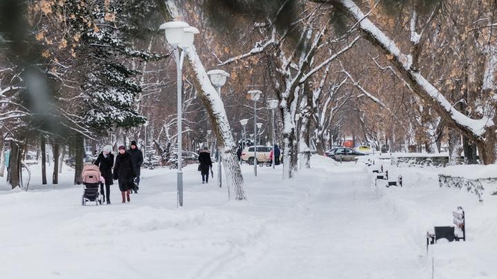 Крещенские морозы отменяются? Публикуем прогноз погоды в Прикамье на неделю