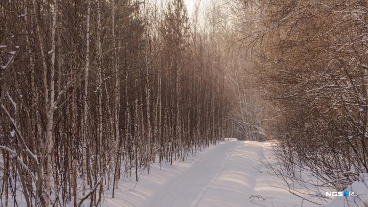 «Шёл по следам от снегоходов»: мужчина пропал под Новосибирском