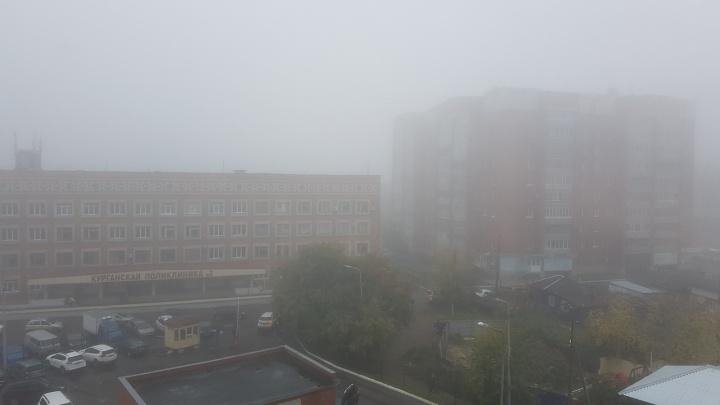 В Курганской области густой туман ухудшил видимость на дорогах