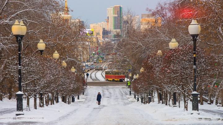 Первая рабочая неделя зимы в Екатеринбурге будет умеренно теплой и бесснежной