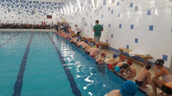 Клуб плавания Aqua Star приглашает детей и взрослых на занятия плаванием в новом учебном году