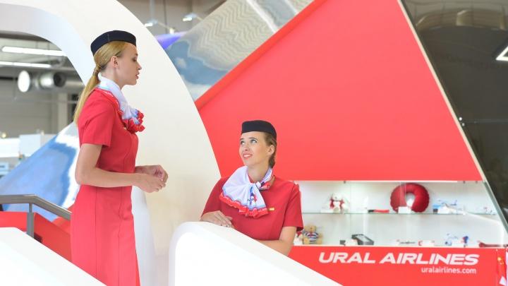 Правее, на солнце, в санаторий: «Уральским авиалиниям» выделили 10 млн на отдых сотрудников