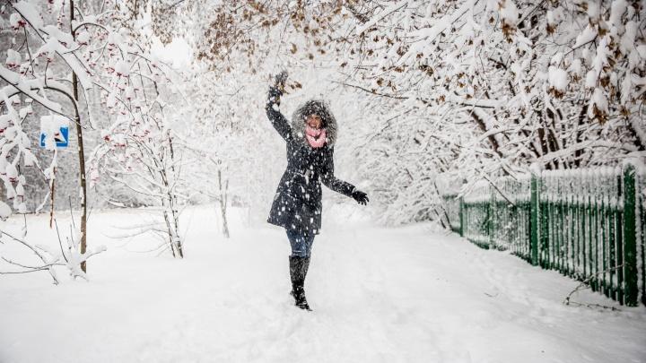 Тепло и снежно: в Новосибирск идут снегопады и метели