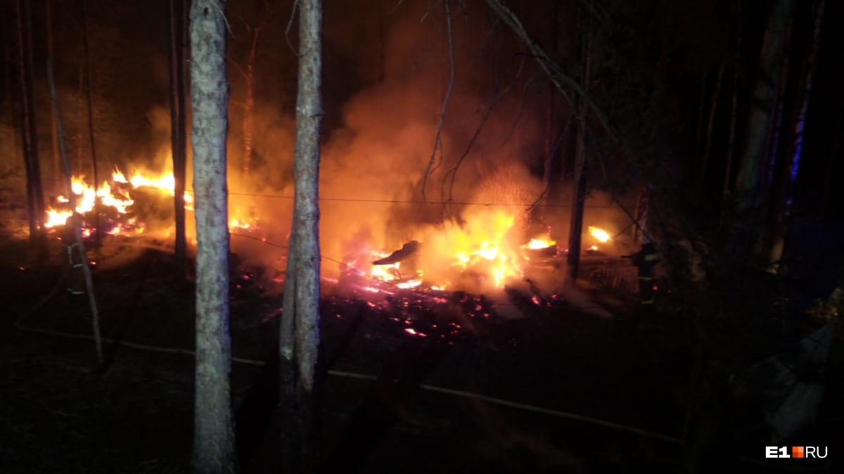 Пламя перекинулось на лес: в ЦПКиО загорелся пейнтбольный полигон