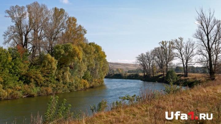 База отдыха сливала сточные воды на территории природного парка