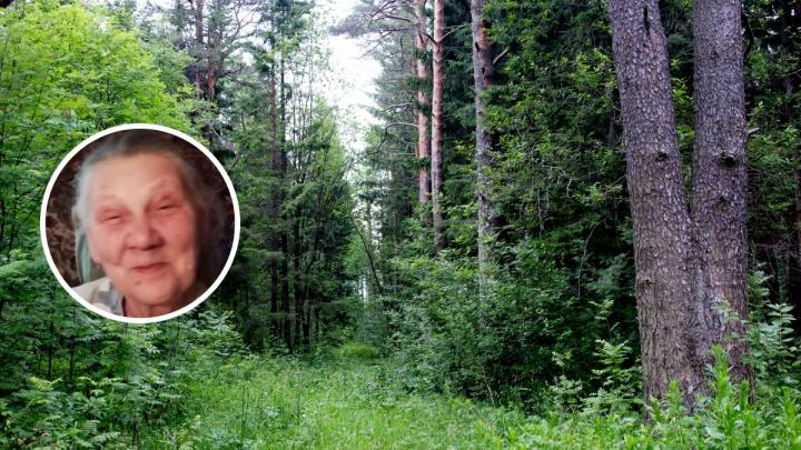 Она не вышла из леса: в Ярославской области ищут пенсионерку с ведром