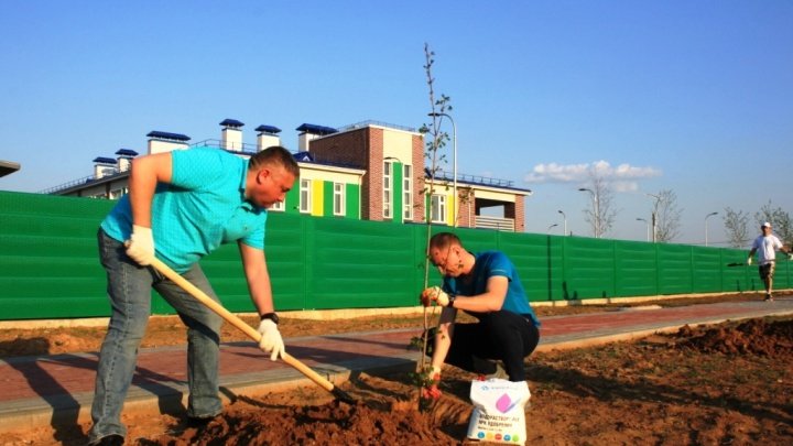 В Котельниково основали «Зеленый фонд»
