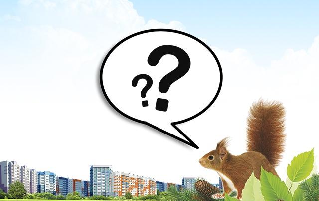 Что вы знаете о застройщике: тест о крупном игроке регионального рынка недвижимости
