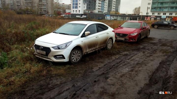 Свердловские депутаты отложили на потом решение проблемы гряземесов