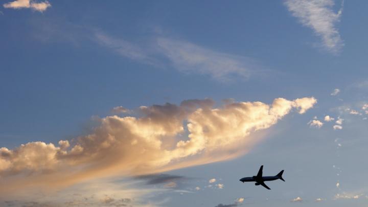 Летевший в Новосибирск самолет вернулся в «Пулково» из-за болезни пассажира