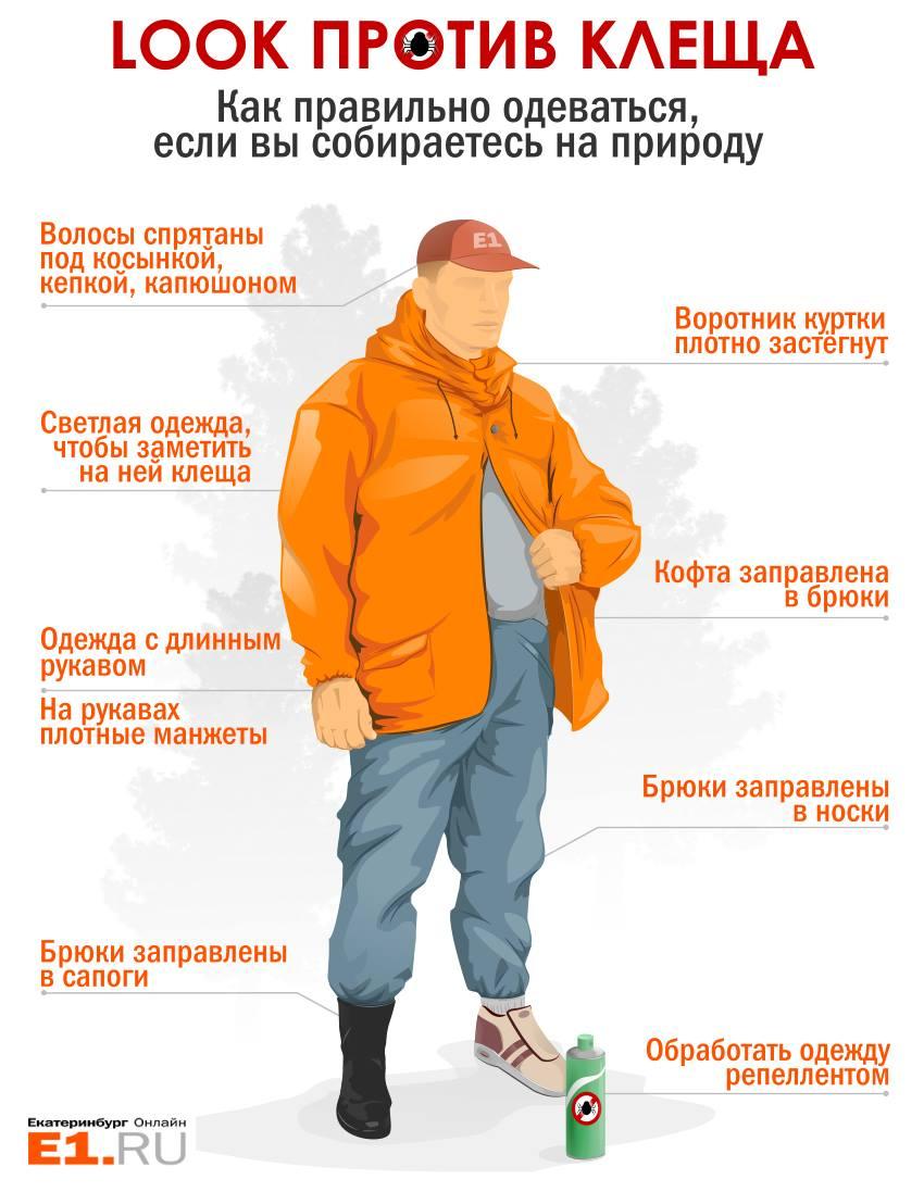 От клеща не зарекайся: инструкция E1.RU для уральского туриста