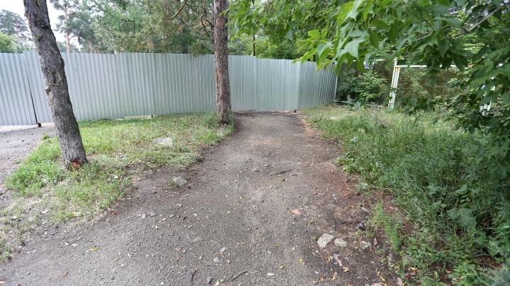 В парке Гагарина начали строить центр олимпийской подготовки по шорт-треку