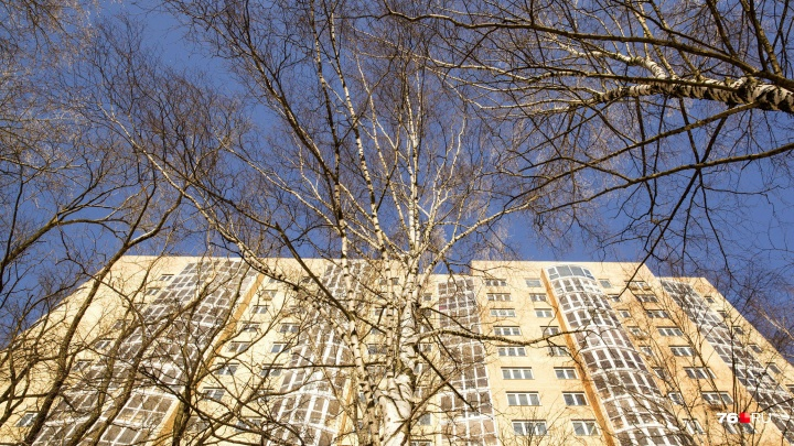 В Ярославской области запретят шуметь днём: в какое время