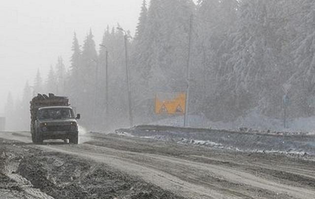 В машине на трассе Курган–Звериноголовское обнаружили тело мужчины