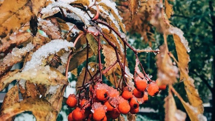 Снег в пригороде: подборка красочных снимков от красноярцев