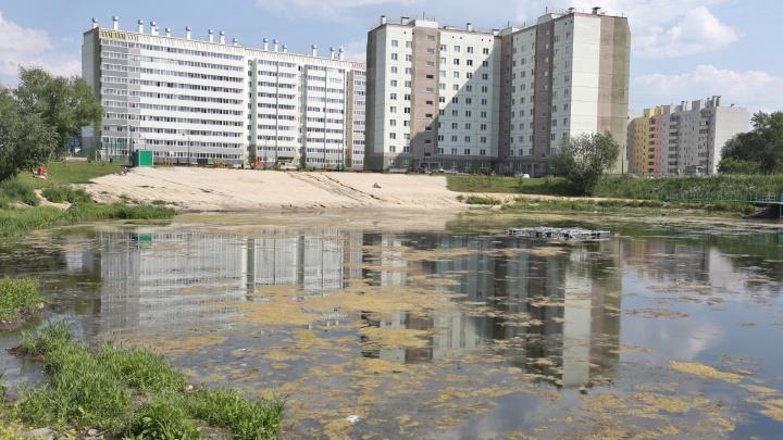 «Девичьи слёзы» утекли в канализацию: почему обмелел пруд в челябинском сквере