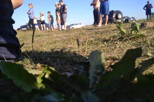Местного жителя водолазы ищут второй день. О трагедии рассказали очевидцы, сделав фото с места поисков