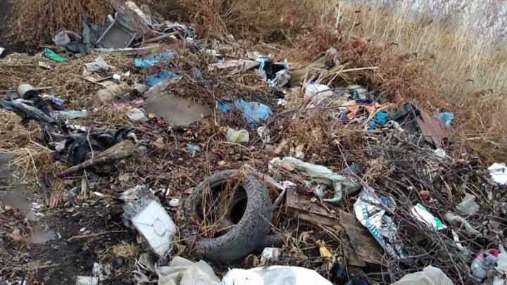 «Живем в постоянном зловонии»: жители станицы под Новочеркасском пожаловались на помойку у домов
