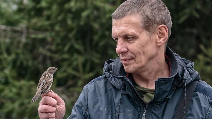 Новосибирец придумал себе необычное хобби. Он пять лет фотографирует воробьёв