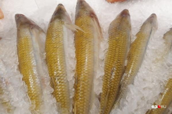 Рыбу хотя и хранили в морозильнике, но ветеринарных документов на нее у коммерсантов не было