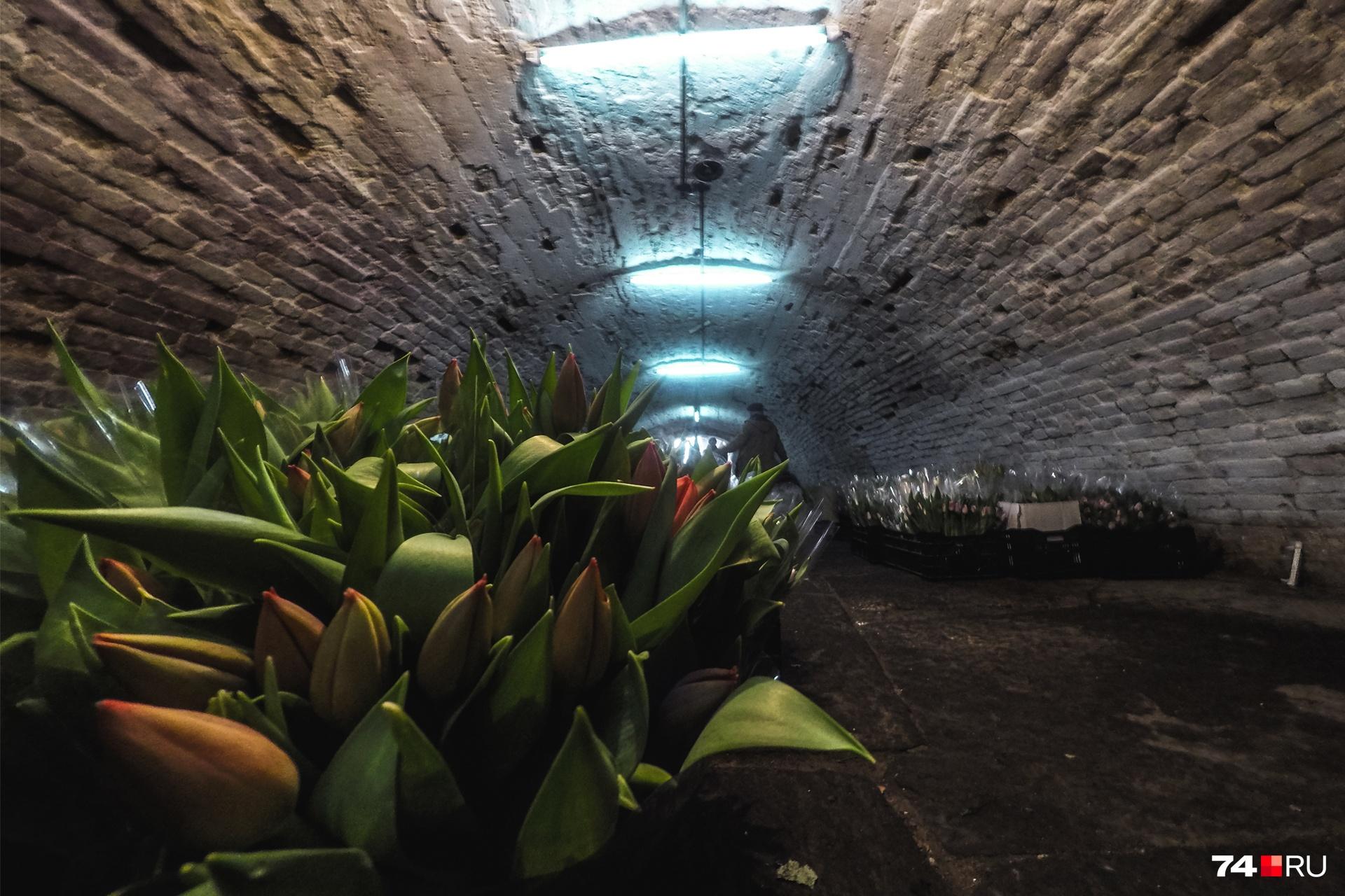 Цветы хранятся в купеческом погребе