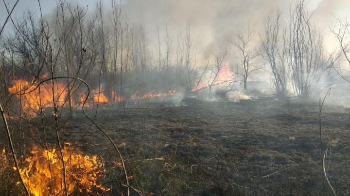 На выходных в Ростове сохранится высокий риск возникновения пожаров