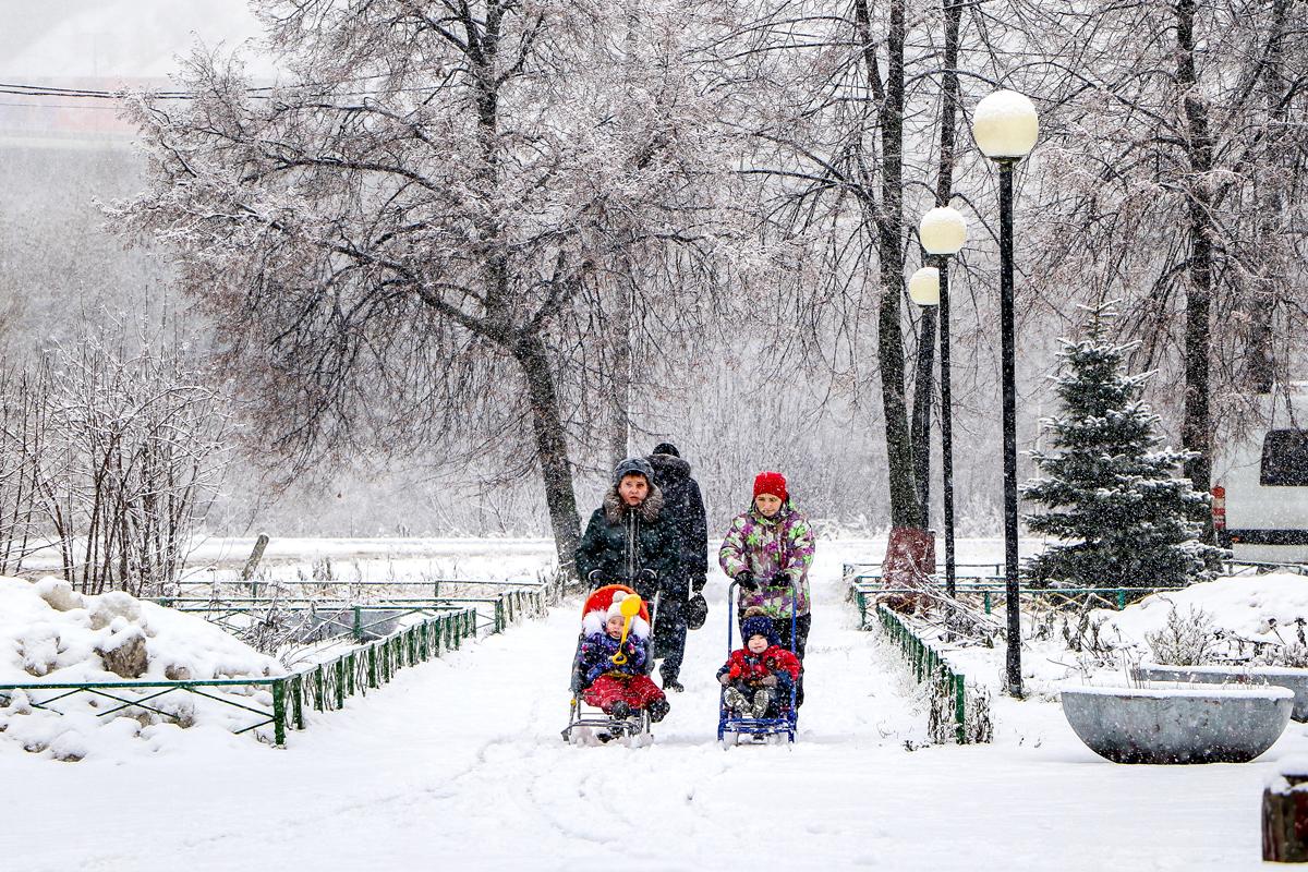 Рождаемость вНижегородской области снизилась на11,5%