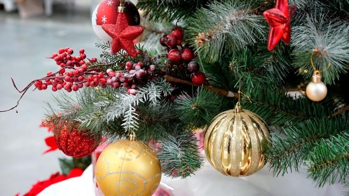 Впустить праздник в свой дом: новогодняя ярмарка в «Бауцентре»