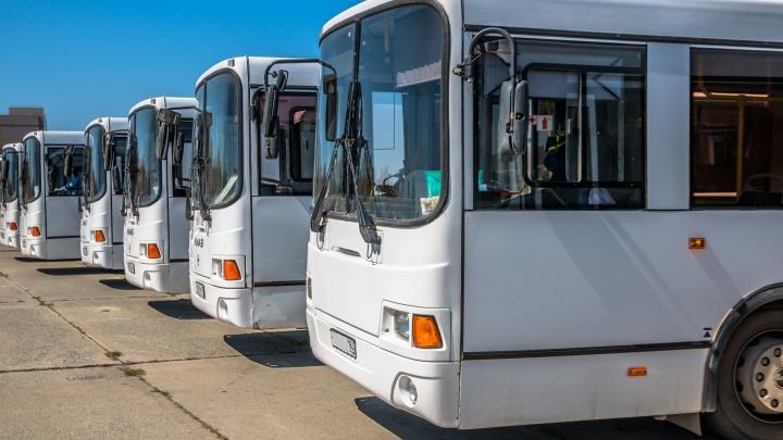 Власти Самары потратят полмиллиарда рублей на оплату автобусов, взятых в лизинг