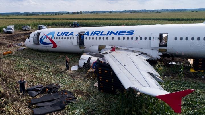 Спустя неделю после посадки в кукурузном поле самолет «Уральских авиалиний» распилят и вывезут
