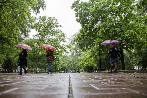 В ближайшие три дня в регионе ожидается дождь с градом