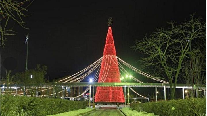 На площади Революции протестировали подсветку на новой елке