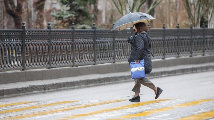 Сутки потерпеть: синоптики обещают прекращение проливного дождя в Волгограде