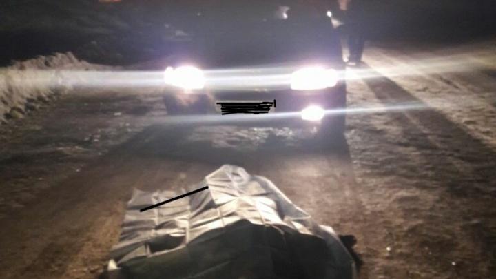 В Башкирии под колесами Audi погибла женщина