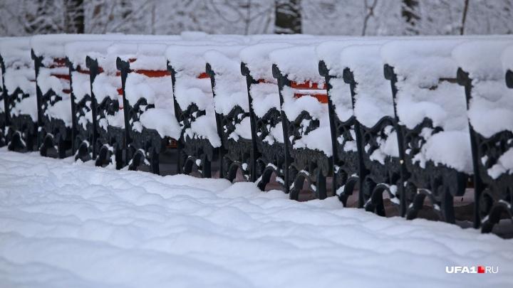 Скоро ветер переменится: синоптики рассказали, когда в Башкирии ждать снегопадов