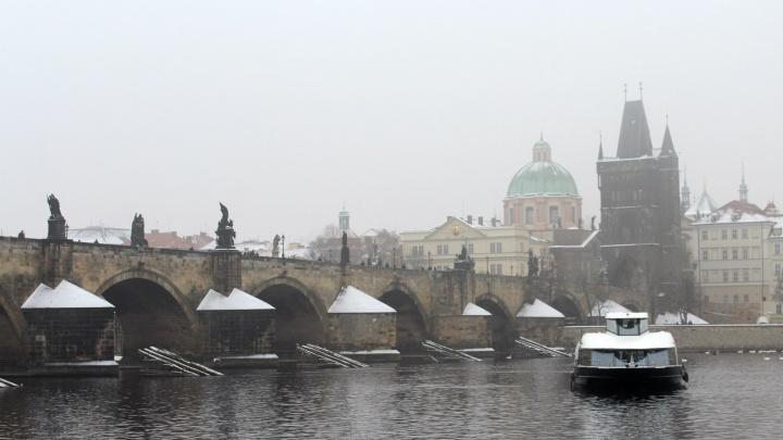 Подальше из Сибири: названы самые популярные направления на новогодние каникулы