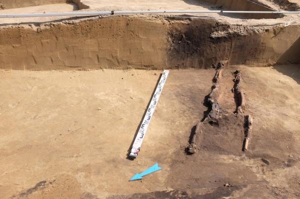 Всего за время работы было найдено 10 тысяч находок и два десятка захоронений