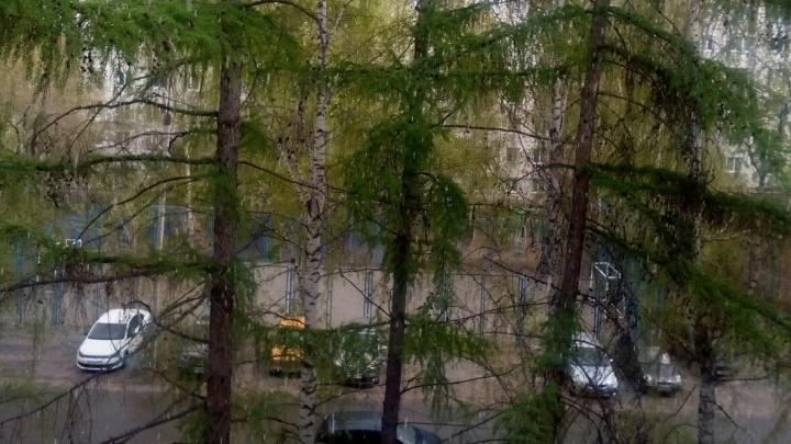 В центре Екатеринбурга в середине мая выпал снег