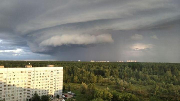 Новосибирск накрыло огромное свинцовое облако