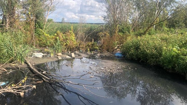 Горы мусора и слив канализации: жители Тюменского района нашли возле своих домов большую свалку