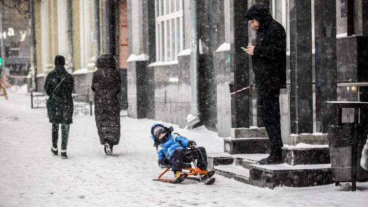 Облачно, небольшой снег: первые дни года в Новосибирске будут теплыми