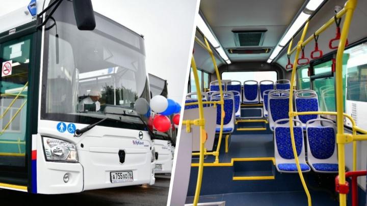С кондиционерами и не только: в Ярославль приехали новые автобусы