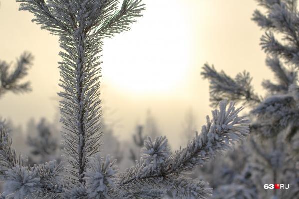 На смену холодам пришло повышение температуры
